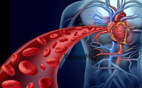 تحقیق دستگاه گردش خون و فشار خون و تعیین گروه خونی